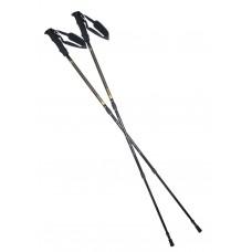 Палки для горного треккинга и нордической ходьбы NW ТК 19